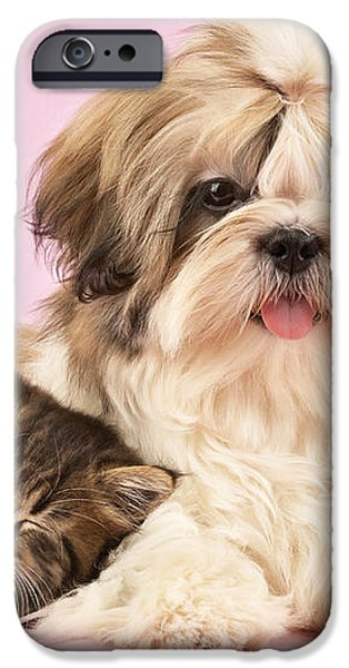 Puppy And Kitten iPhone Case by Greg Cuddiford