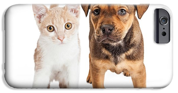 Composite iPhone Cases - Puppy and Kitten Standing Together iPhone Case by Susan  Schmitz