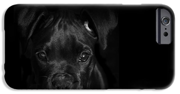 Puppy Lover iPhone Cases - Puppy Eyes iPhone Case by Stephanie McDowell