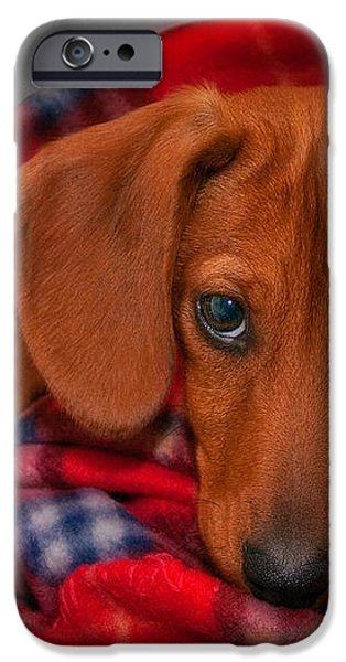 Puppy Love iPhone Case by Susan Candelario