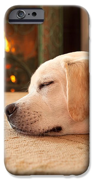 Puppy Sleeping by a Fireplace iPhone Case by Diane Diederich
