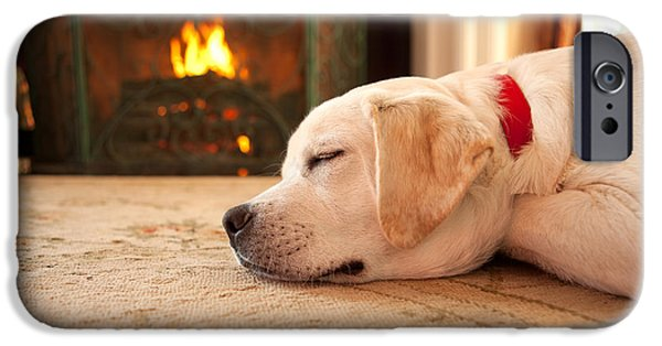 Puppies iPhone Cases - Puppy Sleeping by a Fireplace iPhone Case by Diane Diederich