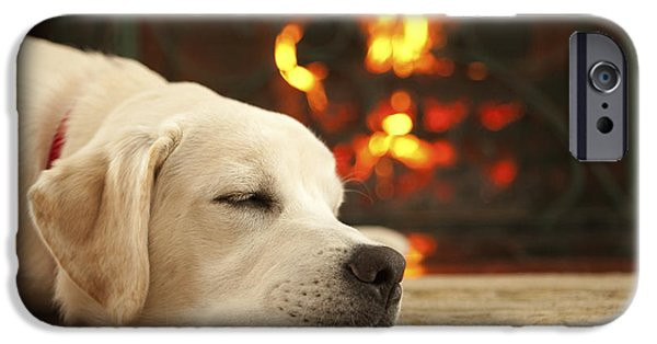 Cute Puppy Photographs iPhone Cases - Puppy Sleeping by the Fireplace iPhone Case by Diane Diederich