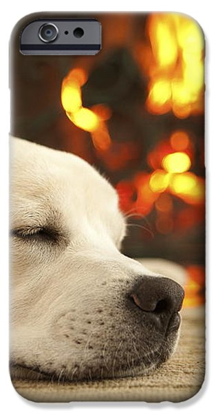 Puppy Sleeping by the Fireplace iPhone Case by Diane Diederich