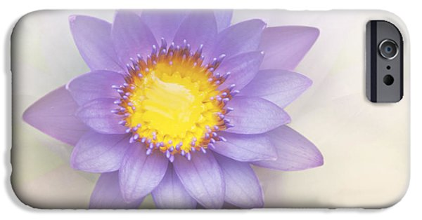 Healing Posters iPhone Cases - Purity and Grace iPhone Case by Sharon Mau