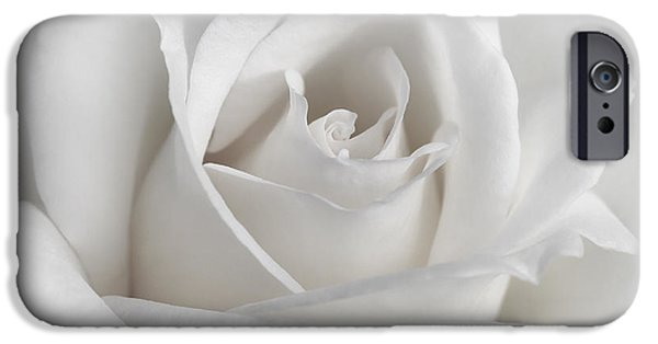Innocence iPhone Cases - Purity of a White Rose Flower iPhone Case by Jennie Marie Schell