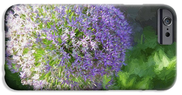 Allium Hollandicum iPhone Cases - Purple Allium 1 Hollandicum Sensation  iPhone Case by Andee Design