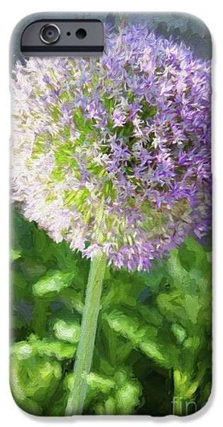 Purple Sensation iPhone Cases - Purple Allium 3 Hollandicum Sensation  iPhone Case by Andee Design