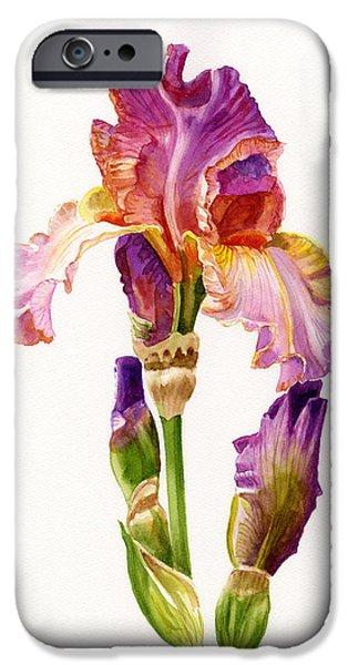 Purple Paintings iPhone Cases - Purple and Orange Iris iPhone Case by Sharon Freeman