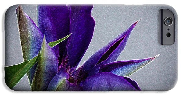 Flower iPhone Cases - Purple Art iPhone Case by Gloria Pasko
