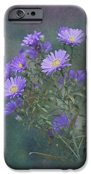 Purple And Green iPhone Cases - Purple Asters iPhone Case by Angie Vogel
