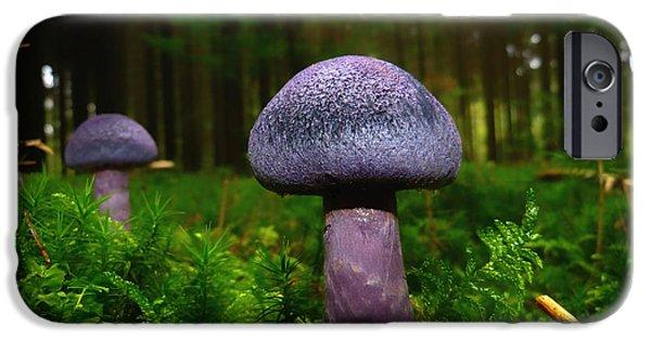 Purple Mushroom iPhone Cases - Purple Beauty iPhone Case by Mountain Dreams