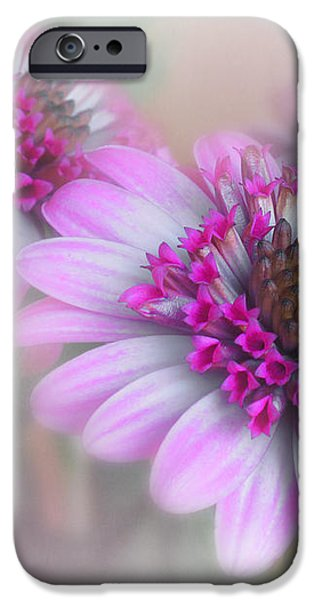 Purple Blooms iPhone Case by David and Carol Kelly
