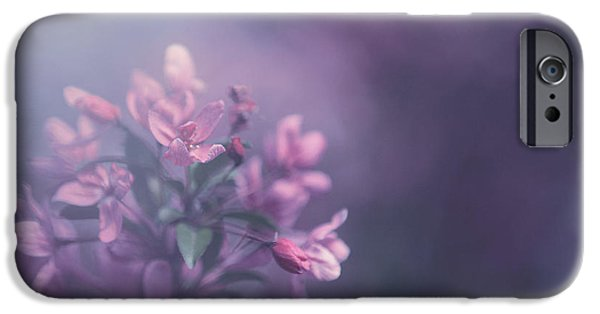 Blossoms iPhone Cases - Purple iPhone Case by Carrie Ann Grippo-Pike