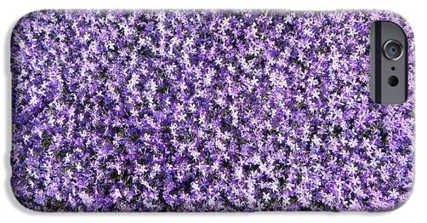 Bed Spread iPhone Cases - Purple Delite iPhone Case by Juanita  Albert