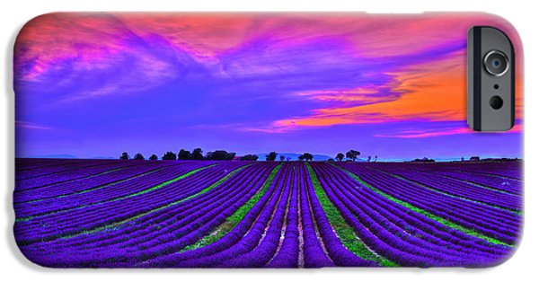 Provence Photographs iPhone Cases - Purple Dream iPhone Case by Midori Chan