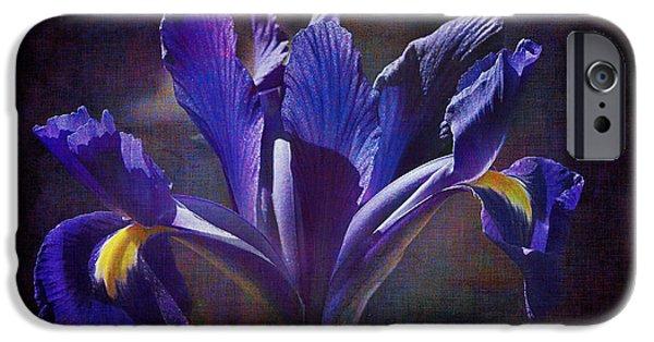 Xiphium iPhone Cases - Purple Dutch Iris iPhone Case by Phyllis Denton