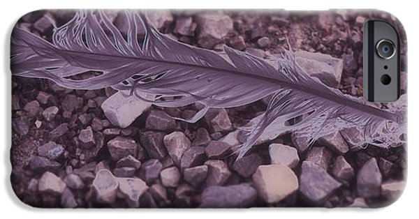 Flight iPhone Cases - Purple Feather iPhone Case by Dan Sproul