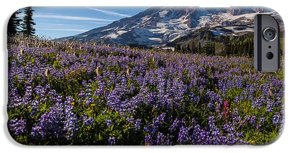 Mount Rainier iPhone Cases - Purple Fields Forever and Ever iPhone Case by Mike Reid