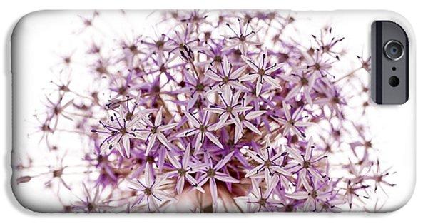Alliums iPhone Cases - Purple flowering onion iPhone Case by Elena Elisseeva