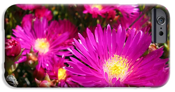 Blooming Pyrography iPhone Cases - Purple flowers iPhone Case by Jelena Jovanovic