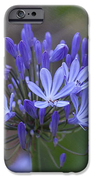 Purple Glory iPhone Case by Kay Pickens