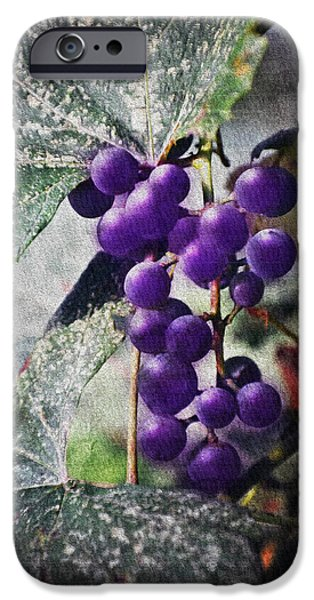 Concord Digital Art iPhone Cases - Purple Grapes - Oil Effect iPhone Case by Brian Wallace