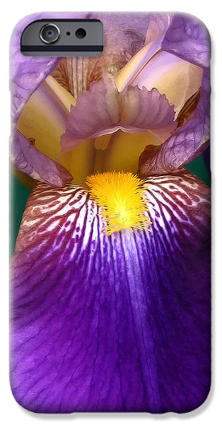 Yellow Bearded Iris iPhone Cases - Purple Iris Flower  iPhone Case by Jennie Marie Schell