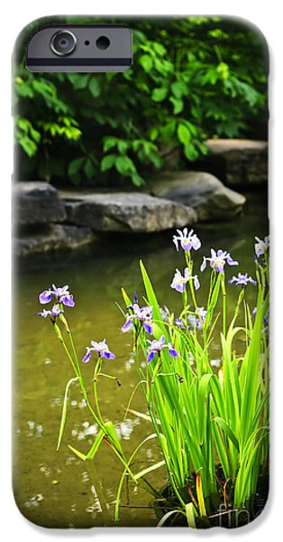 Flora Photographs iPhone Cases - Purple irises in pond iPhone Case by Elena Elisseeva