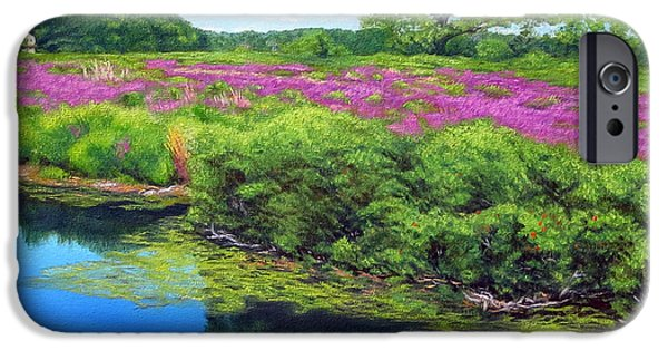Boston Ma Paintings iPhone Cases - Purple Loosestrife On Charles River iPhone Case by Rosemarie Morelli
