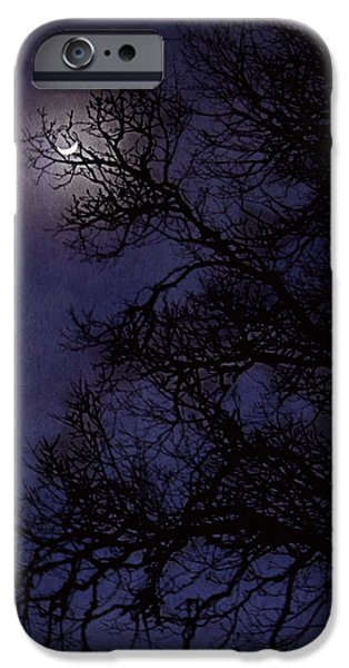 Pines iPhone Cases - Purple Nights iPhone Case by Melanie Lankford Photography