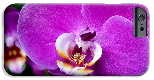 Botanical iPhone Cases - Purple Orchid iPhone Case by Rona Black