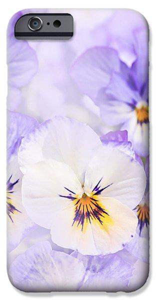 Purple Pansies iPhone Case by Elena Elisseeva