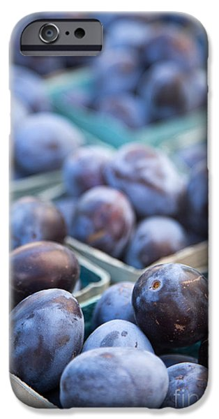 Plum iPhone Cases - Purple Plums iPhone Case by Rebecca Cozart