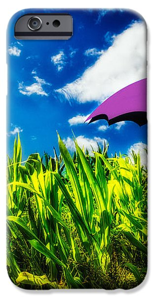 Purple Umbrella in a field of corn iPhone Case by Bob Orsillo