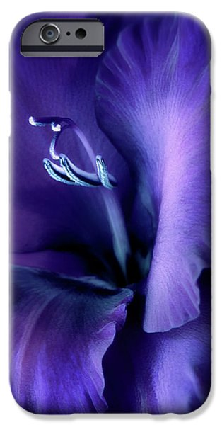 Gladiolas iPhone Cases - Purple Velvet Gladiolus Flower iPhone Case by Jennie Marie Schell