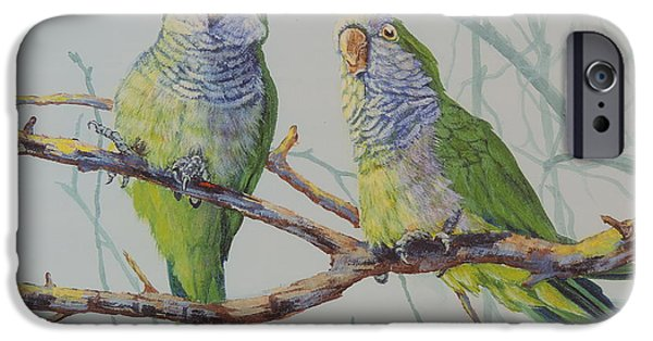 Quaker Paintings iPhone Cases - Quaker Chat iPhone Case by Sandra Williams
