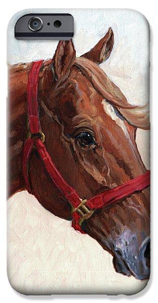 Horse iPhone Cases - Quarter Horse iPhone Case by Randy Follis