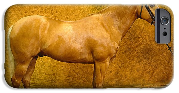 Horse Bit iPhone Cases - Quarter Horse iPhone Case by Will and Deni McIntyre