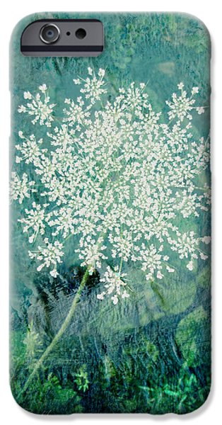 Best Sellers -  - Floral Digital Art Digital Art iPhone Cases - Queen Annes Lace  iPhone Case by Ann Powell