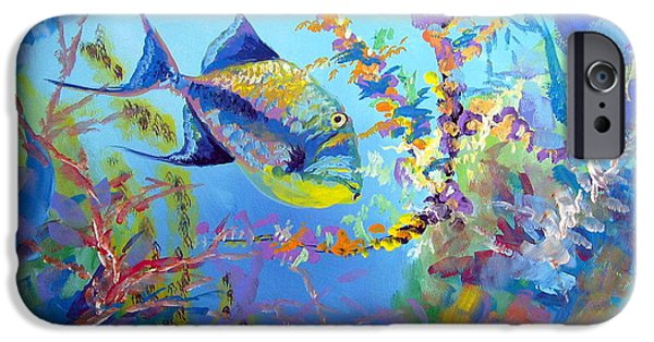 Triggerfish Paintings iPhone Cases - Queen Trigger iPhone Case by David Francke