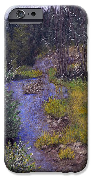 Creek Pastels iPhone Cases - Quiet Creek iPhone Case by Ginny Neece