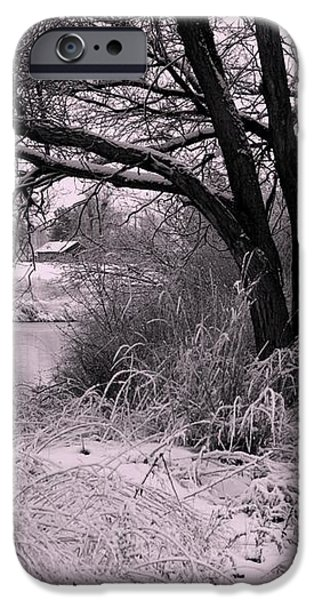 Quiet Morning After Snowfall iPhone Case by Carol Groenen