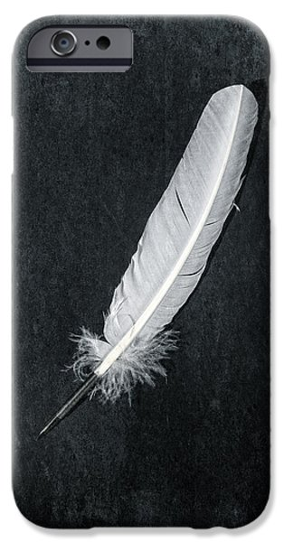 Quill iPhone Cases - Quill iPhone Case by Joana Kruse