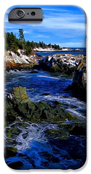 Quoddy Coast with Snow iPhone Case by Bill Caldwell -        ABeautifulSky Photography