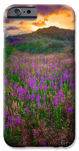 Drama iPhone Cases - Raabjerg Fireweeds iPhone Case by Inge Johnsson