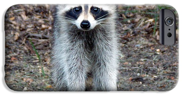 Raccoon Digital Art iPhone Cases - Raccoon Stare Down iPhone Case by Sheri McLeroy