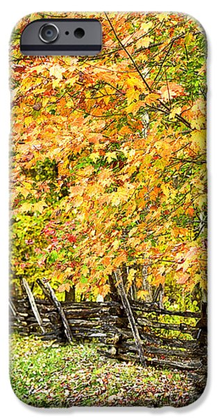 Split Rail Fence iPhone Cases - Rail Fence Fall Color iPhone Case by Thomas R Fletcher