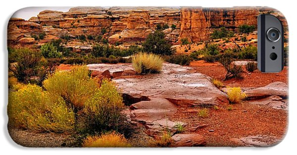 Business Photographs iPhone Cases - Rain at the Needles District 2 iPhone Case by Marty Koch
