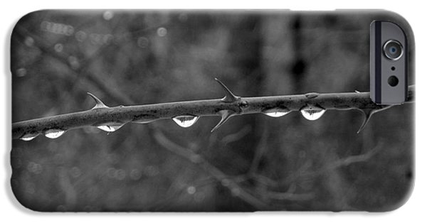 Rainy Day iPhone Cases - Rain Drops and Thorns iPhone Case by Ulli Karner